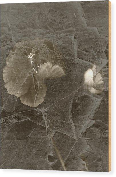 Poppies Under Ice Wood Print