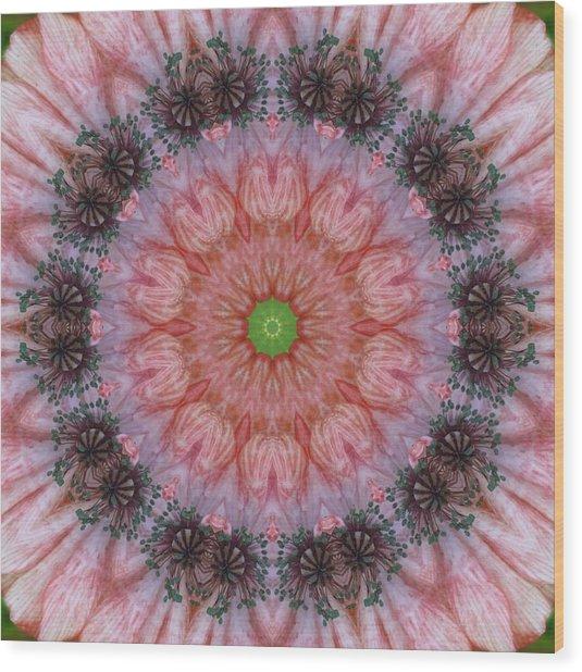 Poppy In My Garden Wood Print