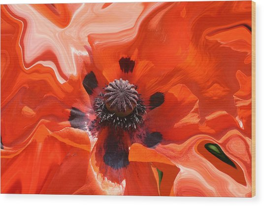 Poppy Nest Wood Print