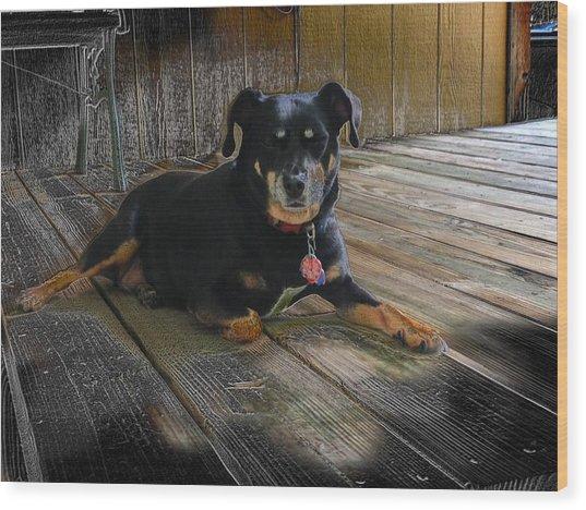 Porch Patrol Wood Print