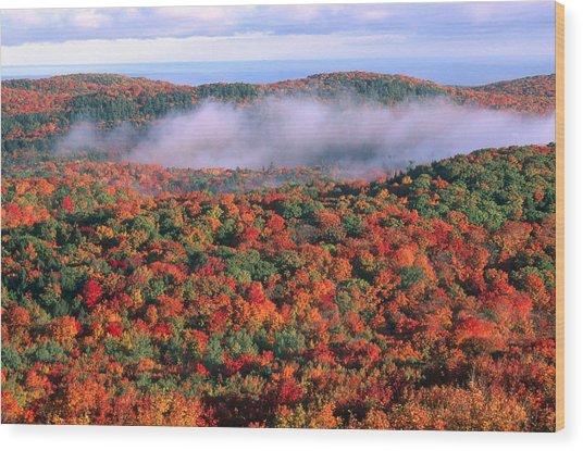 Porcupine Mountains, Michigan Wood Print
