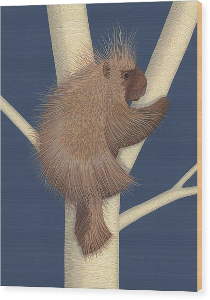 Porcupine Wood Print by Nathan Marcy