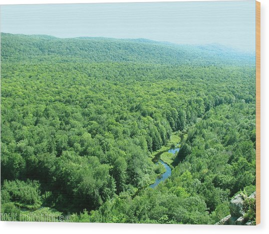 Porcupine River Wood Print by Meghan Ziegel