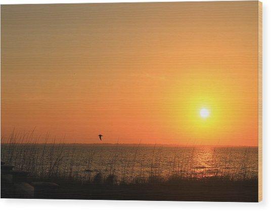 Port St. Joe Sunset Wood Print