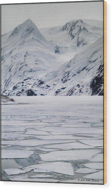 Portage Lake Wood Print