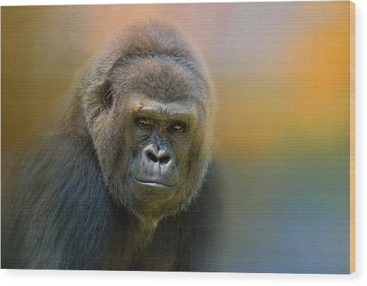 Portrait Of A Gorilla Wood Print