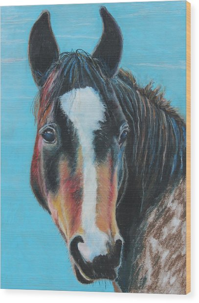 Portrait Of A Wild Horse Wood Print