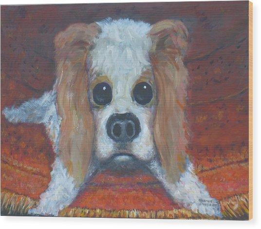 Portrait Of A Puppy Wood Print