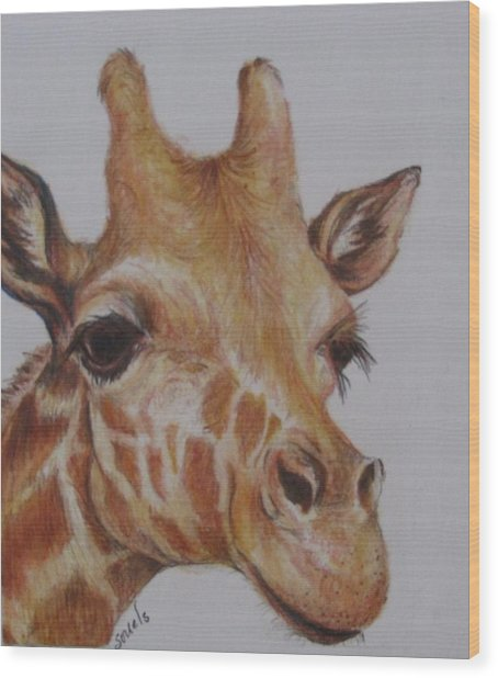 Portrait Of Giraffe Wood Print