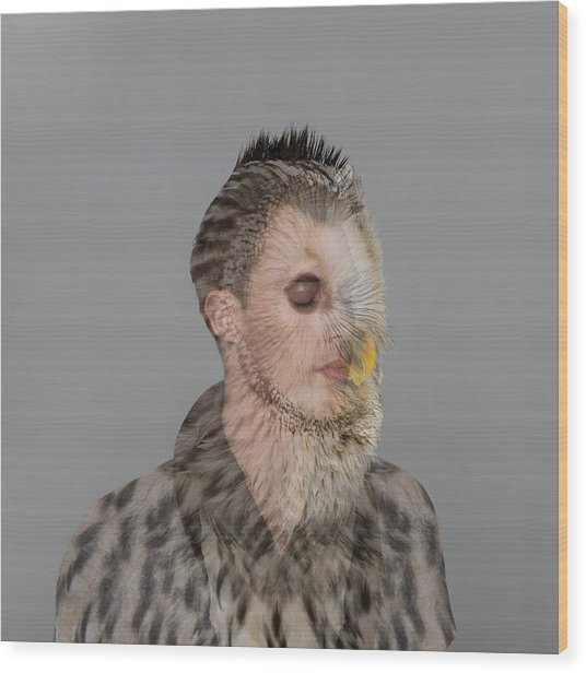 Portrait Of Young Man With Owl Overlay Wood Print by Nisian Hughes