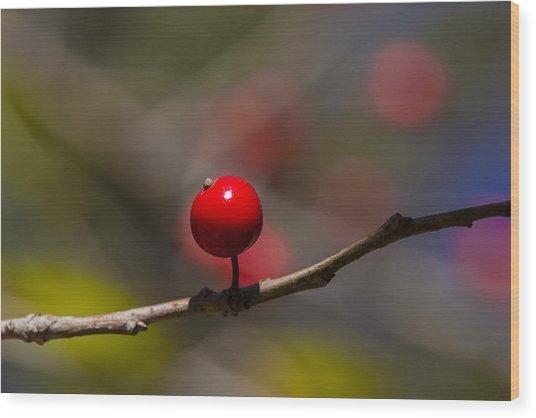 Possumhaw Fruit Abstraction Wood Print