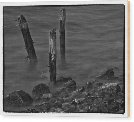 Posts In The Water Wood Print by Craig Brown