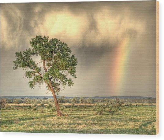 Pot O Gold Wood Print