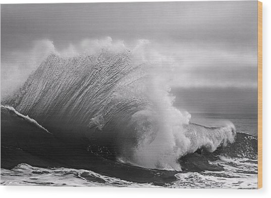 Power In The Wave Bw By Denise Dube Wood Print