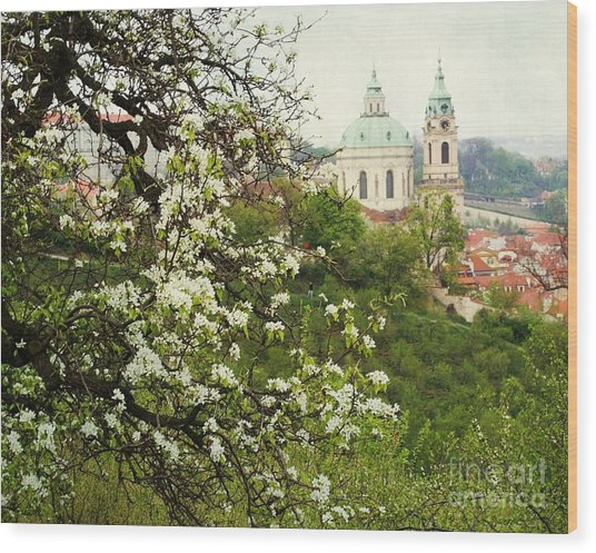 Prague In Bloom II Wood Print