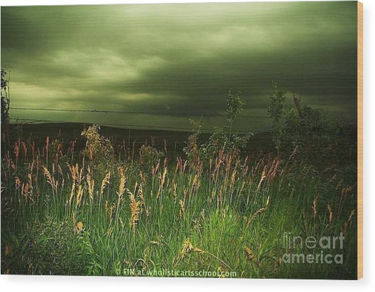 Prairie Clouds Wood Print