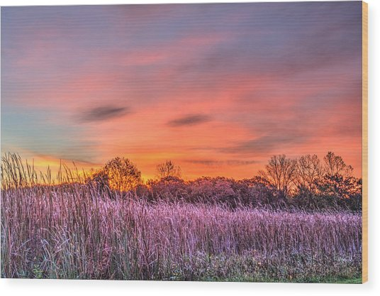 Moraine Hills State Park Moments Before Sunrise Wood Print
