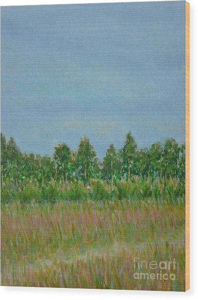 Prairie Morning Light Wood Print