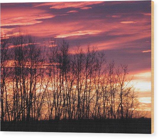 Prairie Sunrise Wood Print by Susan Copley