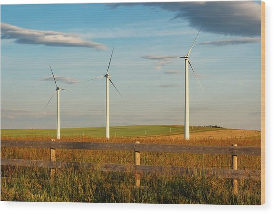 Prairie Wind 2 Wood Print