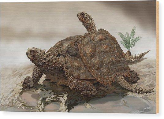 Prehistoric Turtles Wood Print by Jaime Chirinos/science Photo Library