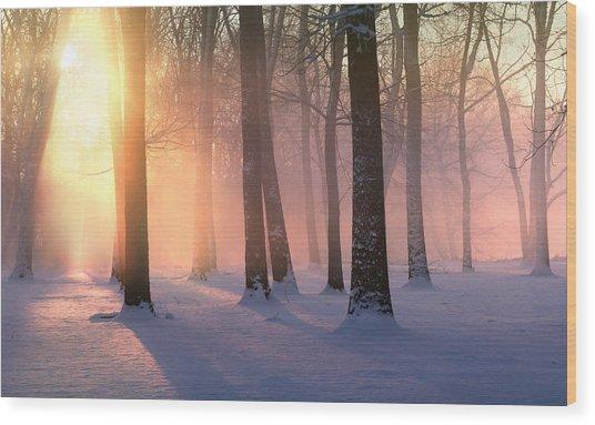 Presence Of Light Wood Print
