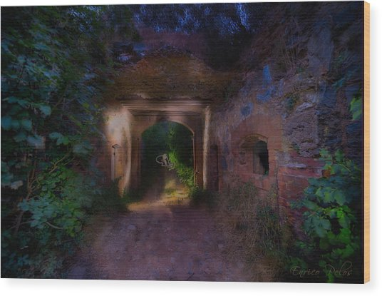 Wood Print featuring the photograph Presenze ... Al Forte Abbandonato Di Rocca Liverna by Enrico Pelos