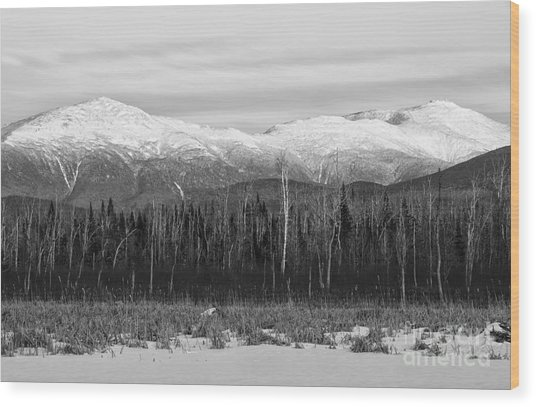 Presidential Range - Pondicherry Wildlife Refuge New Hampshire Wood Print
