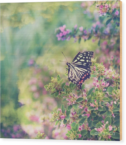 Pretty Butterfly Orange Markings Pink Flowers Green Leaves Wood Print