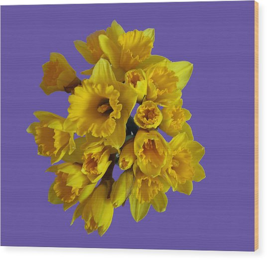 Pretty Daffodils Wood Print