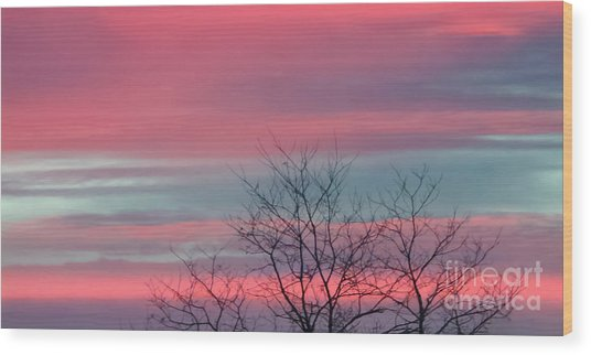 Pretty In Pink Sunrise Wood Print