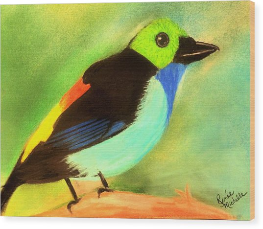 Pretty Paradise Tanager Wood Print