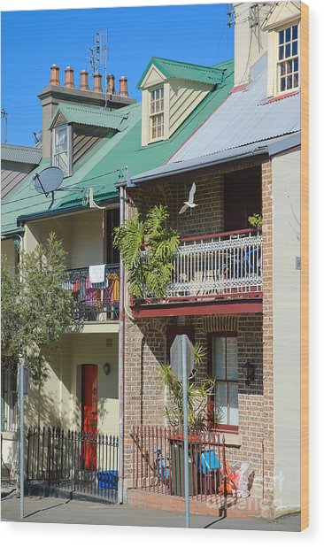 Pretty Terrace Houses In Sydney - Australia Wood Print