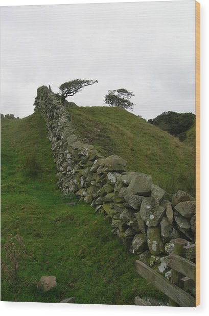 Prevailing Wood Print by Tom Trimbath