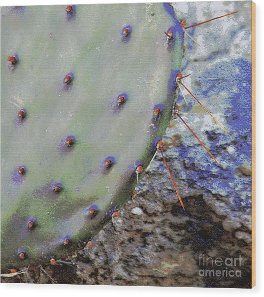 Prickly Pear Wood Print by Joe Pratt