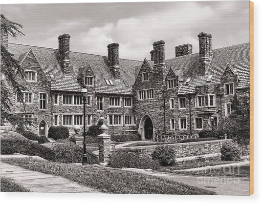 Princeton University Wood Print