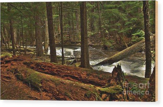 Pristine Forest Wood Print