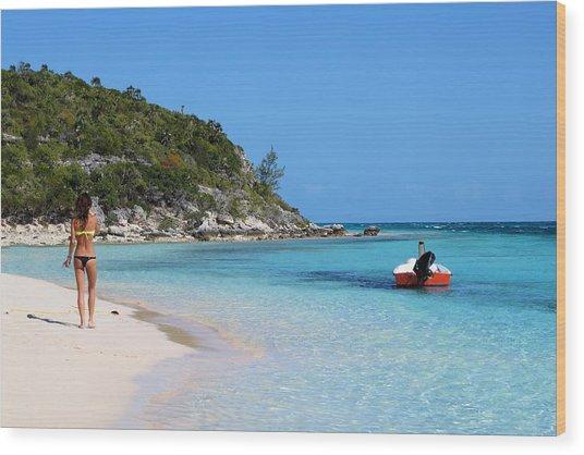 Private Beach Bahamas Wood Print