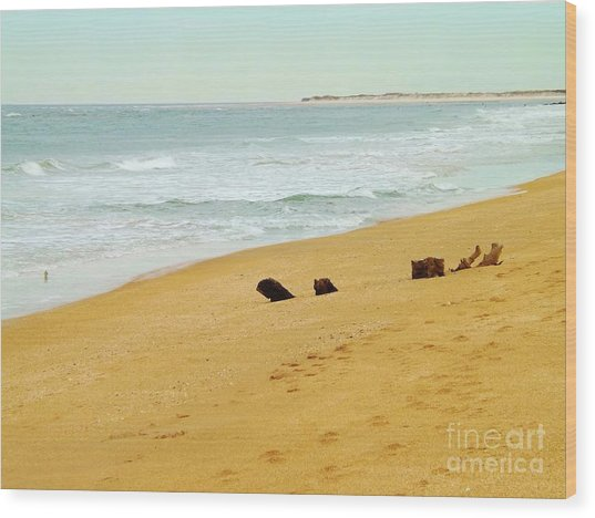 Private Beach Wood Print