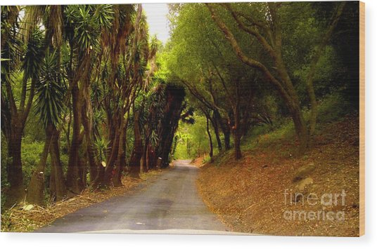 Private Property Wood Print by Sharon Costa