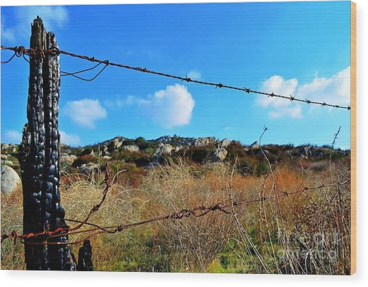 Private Property Wood Print