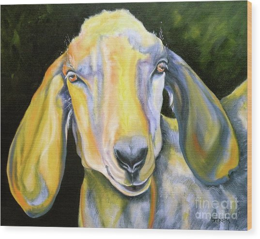 Prize Nubian Goat Wood Print