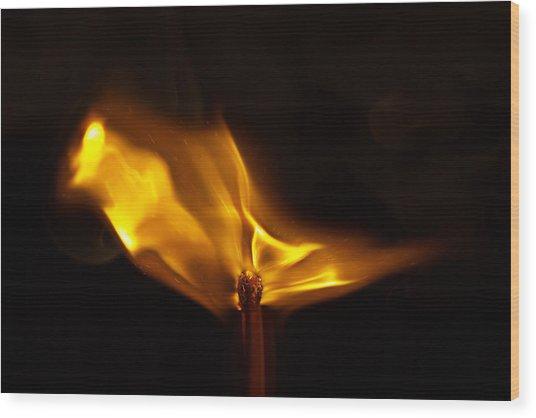 Propagation Wood Print