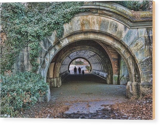 Prospect Park Passage - Brooklyn Wood Print