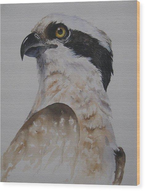 Proud Osprey Wood Print