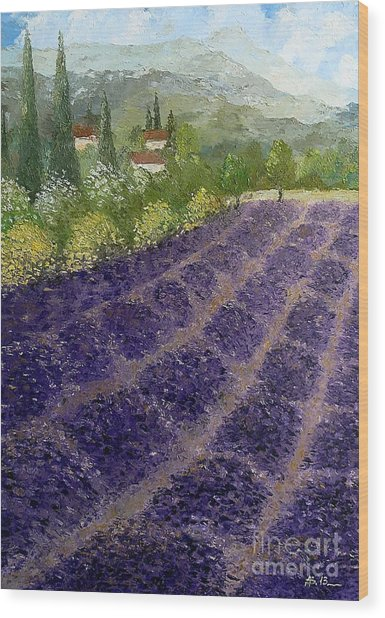 Provence Lavender Fields  Wood Print