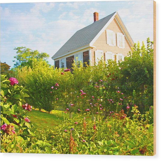 Provincetown Cottage With Green Brown And Pink Wood Print