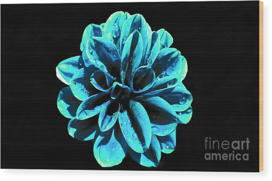 Psychedelic Flower 9 Wood Print