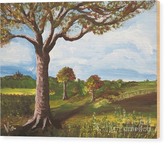 Ptg. Late September Light Wood Print by Judy Via-Wolff