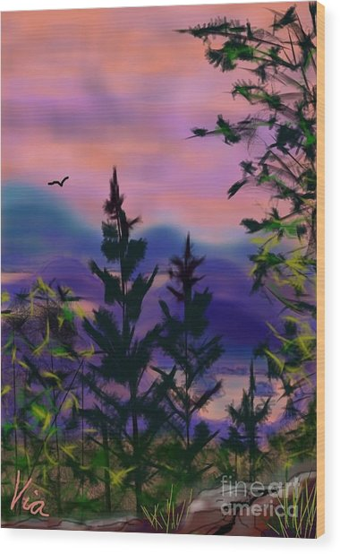 ptg.  Mount Baker View Wood Print
